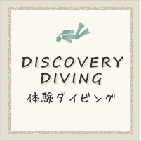 DISCOVERY DIVING
