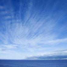 神奈川真鶴半島周辺のダイビングポイントのご紹介